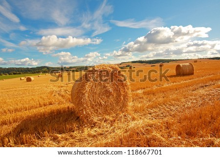 Scenic landscape with hay bales on Summer day - stock photo
