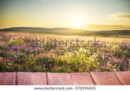 scenic mountain landscape. Nature composition. - stock photo