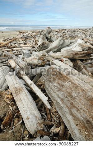 scenic pacific coast in oregon, usa - stock photo