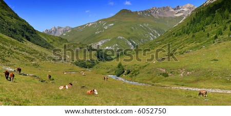 Scenic panorama in the Austrian alps, stitch - stock photo