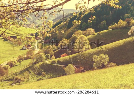 Scenic panorama view of a picturesque mountain summer valley in Germany, Muenstertal, Schwarzwald. Toned.  - stock photo