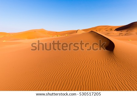 Scenic ridges of sand dunes in Sossusvlei, Namib Naukluft National Park, best tourist and travel attraction in Namibia. Adventure and exploration in Africa.