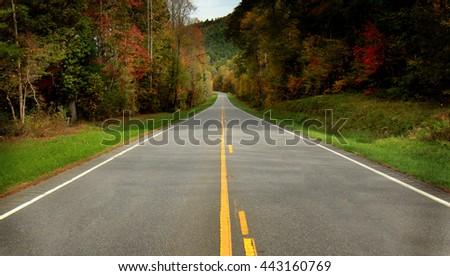Scenic roadway with the colorful leaves of Autumn. - stock photo