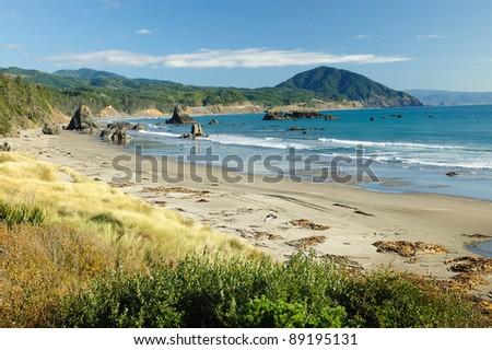 scenic seaside along highway 101, oregon, usa - stock photo
