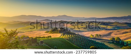 Scenic Tuscany landscape panorama with rolling hills and harvest fields in golden morning light, Val d'Orcia, Italy - stock photo