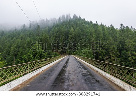 scenic view in Fairfax Bridge  before go to  carbon river in Mount Rainier by ,WA,USA - stock photo