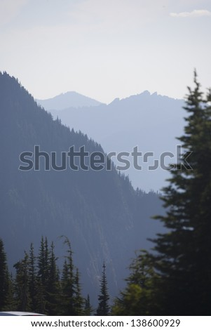 Scenic view in Mt. Rainier National Park, Washington, USA