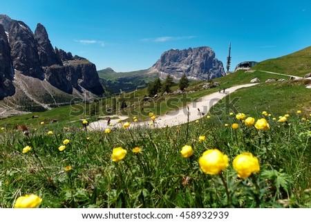 Scenic view of a hiking trail on green grassy fields of wildflowers & rugged Langkofel-Plattkofel Mountain Peaks (Sassolungo-Sassopiatto) in background in Dolomiti~Beautiful scenery of Dolomites Italy - stock photo