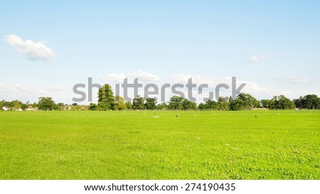 Scenic View of a Lush Green Meadow with a Beautiful Sky Above - stock photo