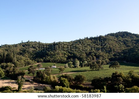 Scenic view of a Napa Valley vineyard - stock photo