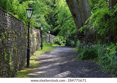 Scenic View of a Path on a Green Tree Lined Leafy Lane - stock photo