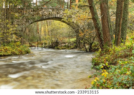 Scenic view of a river in the forest in Boca del Asno natural park on a rainy day in Segovia, Spain. - stock photo