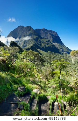 Scenic view of Cirque de Mafate mountains with jungle in foreground, Reunion Island National Park.