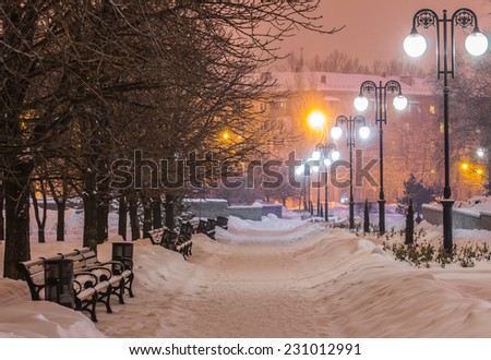 Scenic view of decorated winter city park at night - stock photo