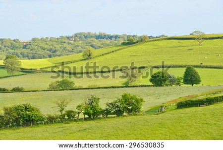 Scenic View of Green Fields in the Saint Catherine's Valley Near the City of Bath in England - stock photo