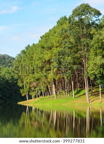 Scenic view of pine tree with lake. Pang Oung, a serene lake in a valley with surrounded by mountain ranges in Mae Hong Son, Thailand - stock photo