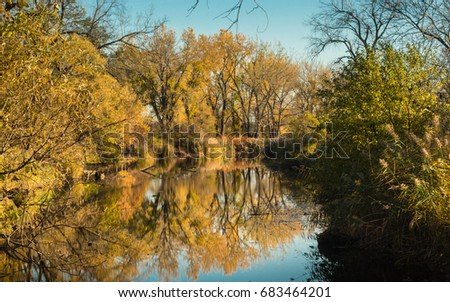 Scenic view of pond in fall at Tifft Farm Nature Preserve in Buffalo, NY