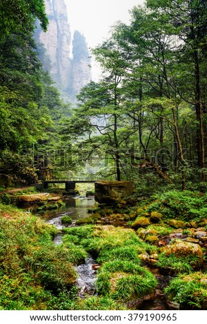 Scenic view of river and bridge among green woods in the Zhangjiajie National Forest Park, Hunan Province, China. Steep cliffs are visible in background. Amazing summer landscape. - stock photo