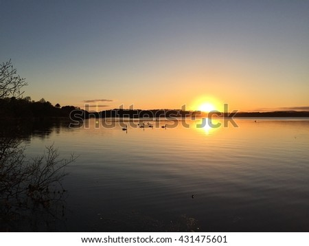 Scenic view of swans on loch at sunset