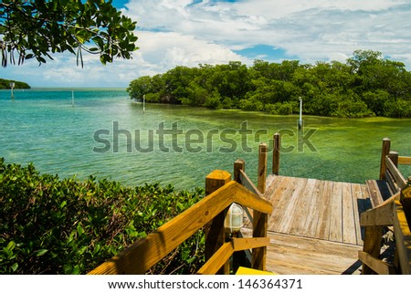 Scenic view of the Florida Keys with mangroves. - stock photo