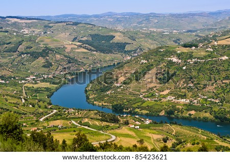 Scenic view of the vineyards on the banks of Douro river near Mesão Frio, Portugal - stock photo
