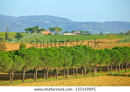 Scenic view of typical Tuscany landscape. Italy - stock photo