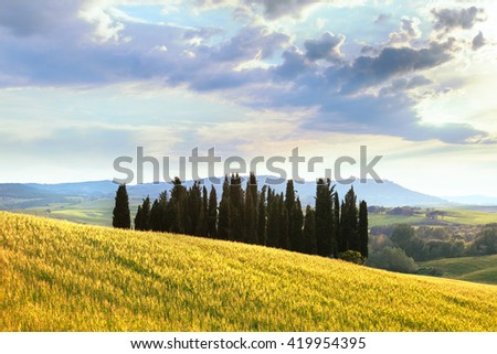 Scenic view of typical Tuscany landscape, Italy. - stock photo