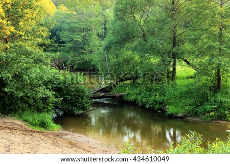 Scenic view on small river in a lush, forbidden environment / Tranquil river flowing in a lush summer forest, reflection of plants in a water - stock photo
