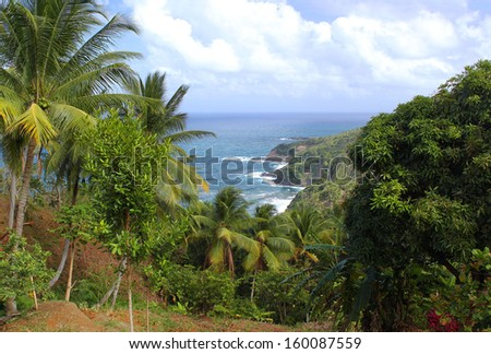 Scenic view to Atlantic Ocean coastline, Dominica, Caribbean islands - stock photo
