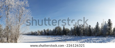 Scenic winter panorama of the forest landscape in the north of Russia - stock photo