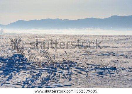 Scenic winter view of a snowy field with grass in the frost in bright sunlight - stock photo