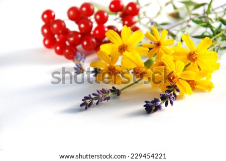 scented marigold and lavender with red berries