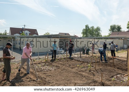 SCHARNHAUSEN, GERMANY - MAY 26, 2016: German volunteers are supporting African, Arabic and Asian refugees in setting up a small garden behind their refugee camp in Scharnhausen, Germany. Over 1 - stock photo