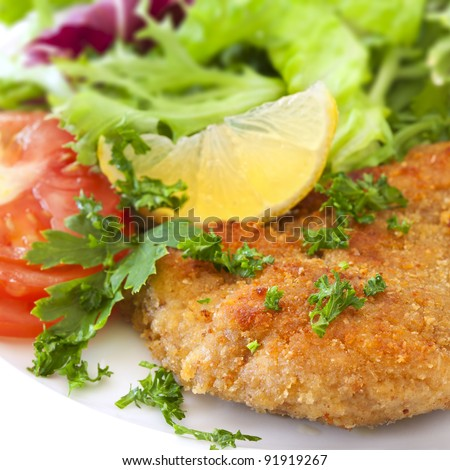 Schnitzel with salad, garnished with lemon and parsley. - stock photo