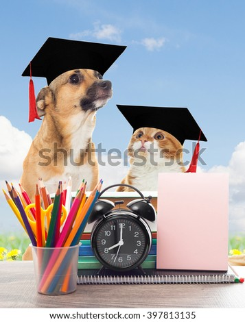 school and funny pets - stock photo