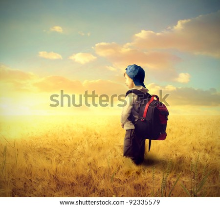 School boy on a wheat field - stock photo
