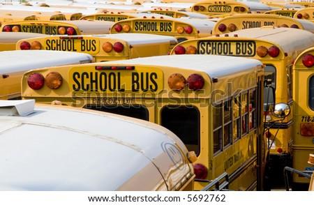 School busses - stock photo