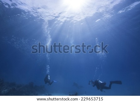 School of jack fish and divers pass coral reef in Dimakya island, Palawan.