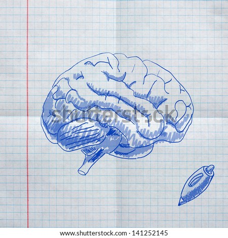 school sketches on checkered paper, brain - stock photo