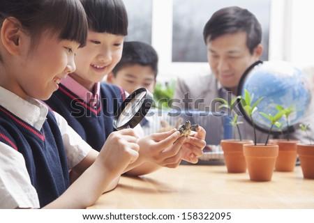Schoolgirls examining turtle through magnifying glass in classroom - stock photo