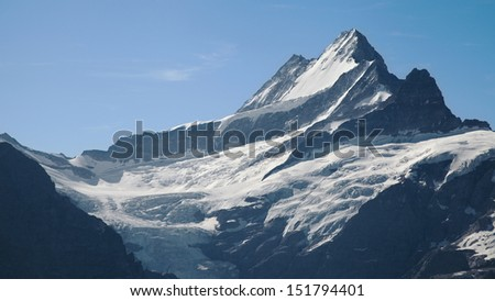 Schreckhorn peak (4078m) in the Bernese Alps from First, Grindelwald, Switzerland.