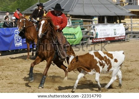 Sciegny, Poland- MAY 15, 2005: International Rodeo Contest, May 15, 2005 in Sciegny, Poland - stock photo