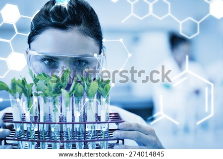Science graphic against female scientist with young plants at lab - stock photo