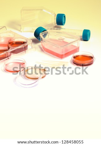 Science laboratory. Equipment and tools of scientific laboratory for experiments and research. Cell culture into plastic flasks and petri dishes for the biomedical diagnostic. - stock photo