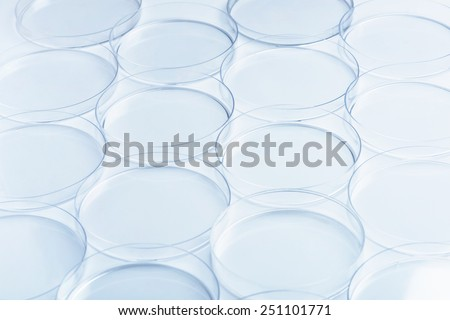 Scientific research. Rows of empty petri dishes - stock photo