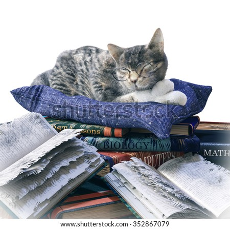 scientist cat and scratched school books funny isolate composition - stock photo