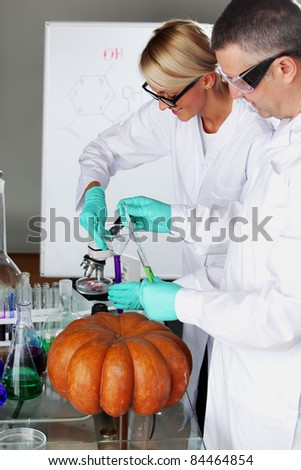 Scientist conducting genetic experiment with pumpkin - stock photo