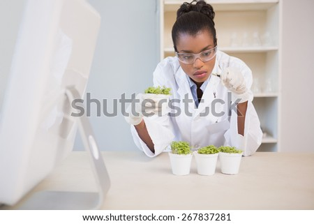 Scientist examining sprouts in laboratory - stock photo