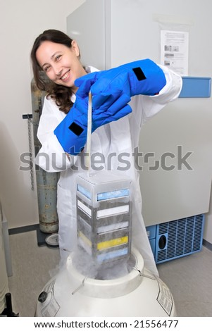 Scientist freezing tissue culture in liquid nitrogen - stock photo