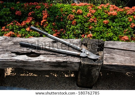 Scissors cut grass laying on the wooden floor. - stock photo